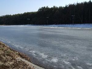 ina-skating2.jpg